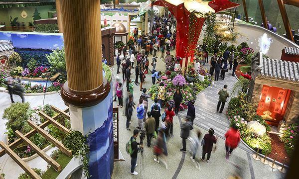 Международную садоводческую ЭКСПО-2019 посетило 7,8 млн человек